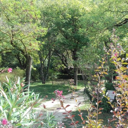Camping La Poche : Emp. N° 90