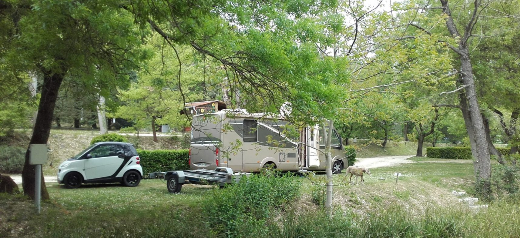 Camping La Poche : Emp.n°58